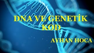 8.SINIF DNA VE GENETİK KOD 1