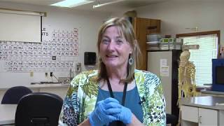 LCOOC Classroom Spotlight: Microbiology & Animal Biology