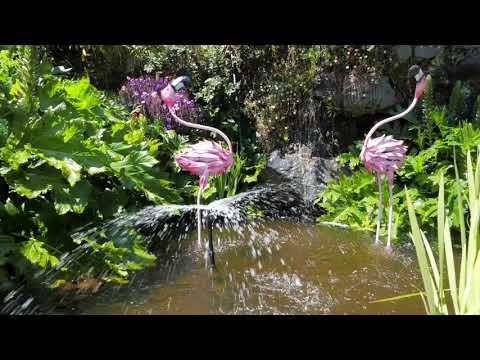 Taranaki Fringe Garden Festival - selection of gardens
