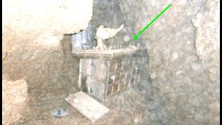 Archaeologists Claims He Discovered The Lost Ark Of The Covenant Inside This Cave
