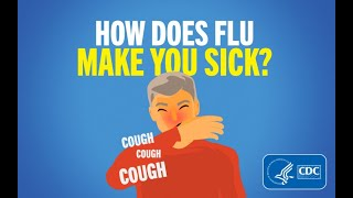 How Does Flu Make You Sick?