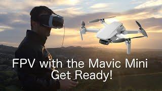VR FPV with the Mavic Mini? get ready!