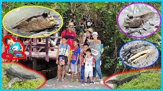 น้องบีม | สำรวจสัตว์ป่าชายเลน เที่ยวเพชรบุรี แหลมผักเบี้ย