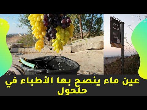شاهد: عين ماء يوصي بها الاطباء في مدينة حلحول - عين كسبر- محافظة الخليل - فلسطين