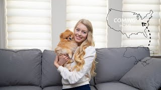 Story Time: How I Imported My Pomeranian Puppy from Another Country