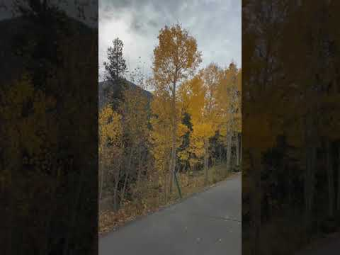 Video Of Golden Gate Canyon, CO