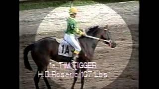 TIM TIGGER - 50 por uno - 16 Febrero 1992
