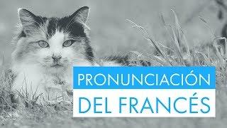 Practica la pronunciación del francés con frases útiles y fáciles