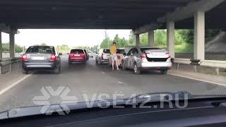 В Кемерове под Кузбасским мостом произошло тройное ДТП