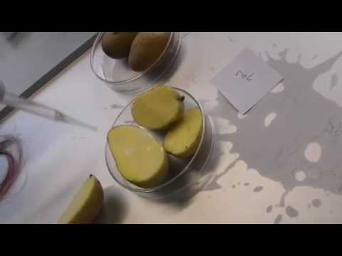 Die Creme otbeliwajuschtschi in den Apotheken
