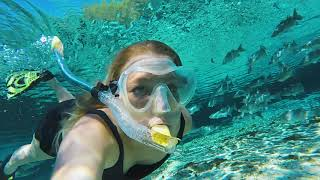 Exploring The Clearest Water On The Planet | PLAY HARD FLORIDA