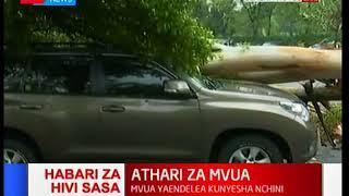 HABARI ZA HIVI SASA:Mti mmoja mkubwa umeanguka katika Hoteli ya Serena na kuangukia Magari kadhaa