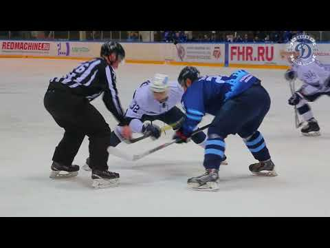 Талисман северсталь хоккей