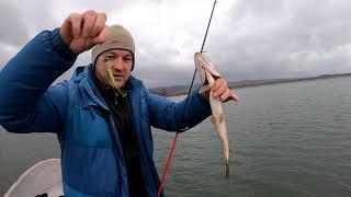 Рыбалка в бахчисарае