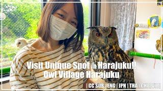 TOKYO TOURIST INFORMATION CENTER (Harajuku)