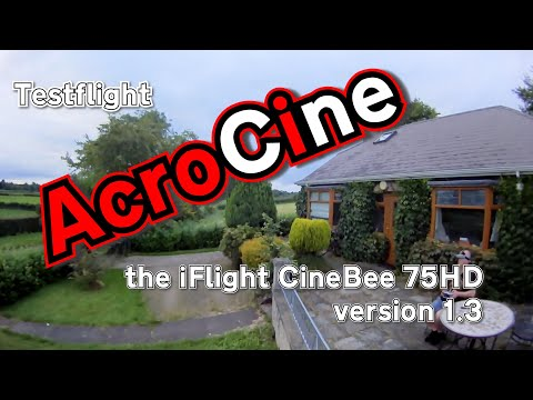 iFlight CineBee 75hd | Courtesy BangGood | Test Flight