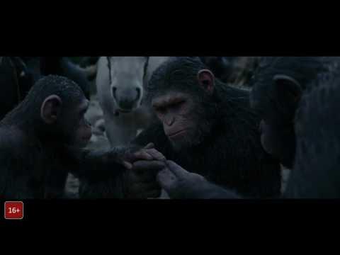 Планета обезьян :война скачать фильм