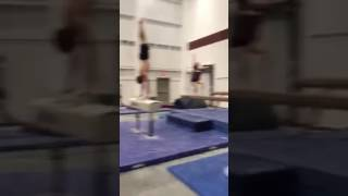 Best Mannequin Challenge Texas A&M Gymnasts