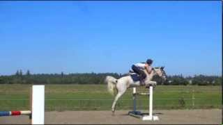 Flying pony! Cowboy jumping 1 meter (3ft3)