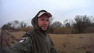 Как ловить сома в приморском крае