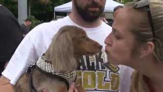 DACHSTOBERFEST 2015 - West Palm Beach, Florida - NewsSpot Story