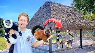 BUILDING GIANT LEMUR ENCLOSURE FOR MY BACKYARD ZOO !