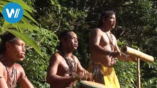 """St. Vincent & Dominica (travel-documentary from the season """"Caribbean Moments"""")"""
