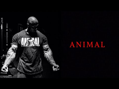 Download ANIMAL [HD] Bodybuilding Motivation HD Mp4 3GP Video and MP3