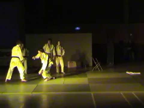 2011 - Judodemonstratie t Rosco