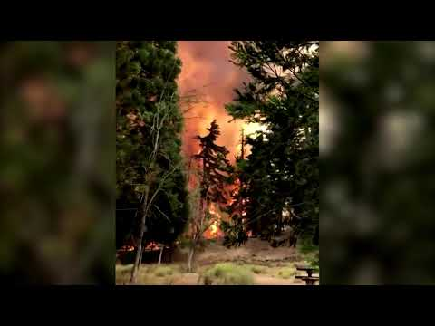 Massive flames engulf Angeles National Forest in California
