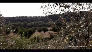preview picture of video 'Hotel Rural & Spa Monnaber Nou en Mallorca, Finca'