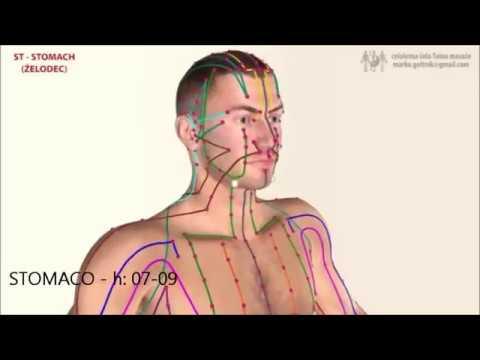 Arteriosa impulso di pressione venosa