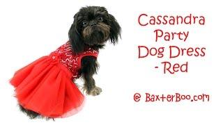 Cassandra Party Dog Dress - Red