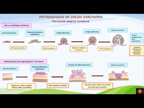 Tratarea viermilor cu copii