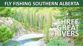 Fly Fishing Southern Alberta - Three Great Rivers