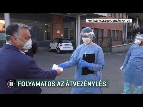 Papillomavírus és mycosis