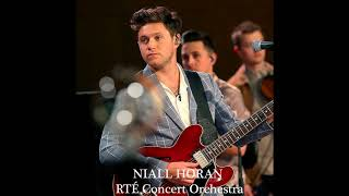 Niall Horan - You And Me (RTE Concert Orchestra Audio)