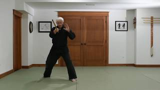 Tensoku Ryu Hanbo Shodan Kata