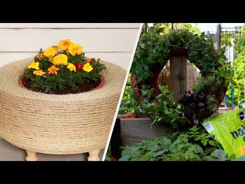 Give Your Garden A Summer Glow Up