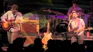 Dr. Dog- The Rabbit, The Bat, And The Reindeer (Live @pickathon 2010)