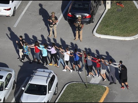 At least 15 dead in south Florida school shooting
