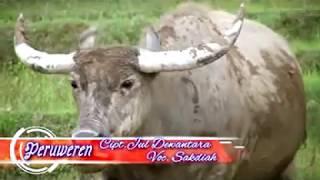 Lagu Gayo (Sakdiah) - Peruweren
