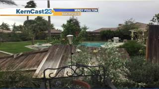 Strong winds knock down several trees in Bakersfield