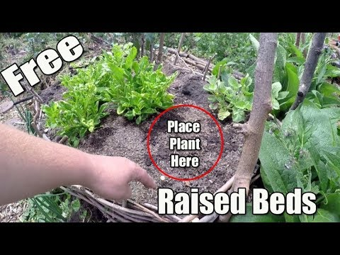 DIY FREE All Natural Raised Bed Garden!