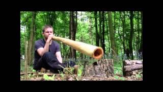 'Yolngu Matha' Rowan Didgeridoo in G. Made in the UK by Paul Osborn