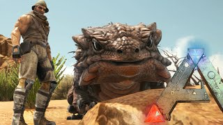 thorny dragon ark