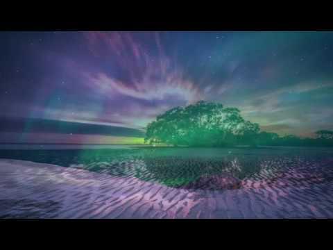 Sunday Winter Day 2019 - Chill Instrumental Reggae
