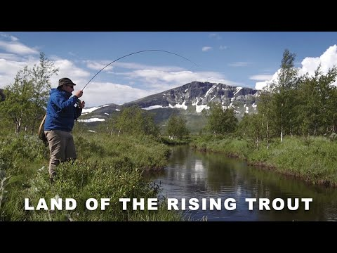 Land of the Rising Trout