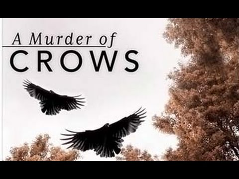 Воронья стая 2010 - A Murder of Crows