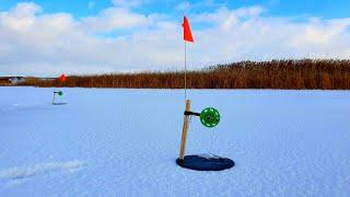 Зимняя рыбалка 2019 на жерлицы